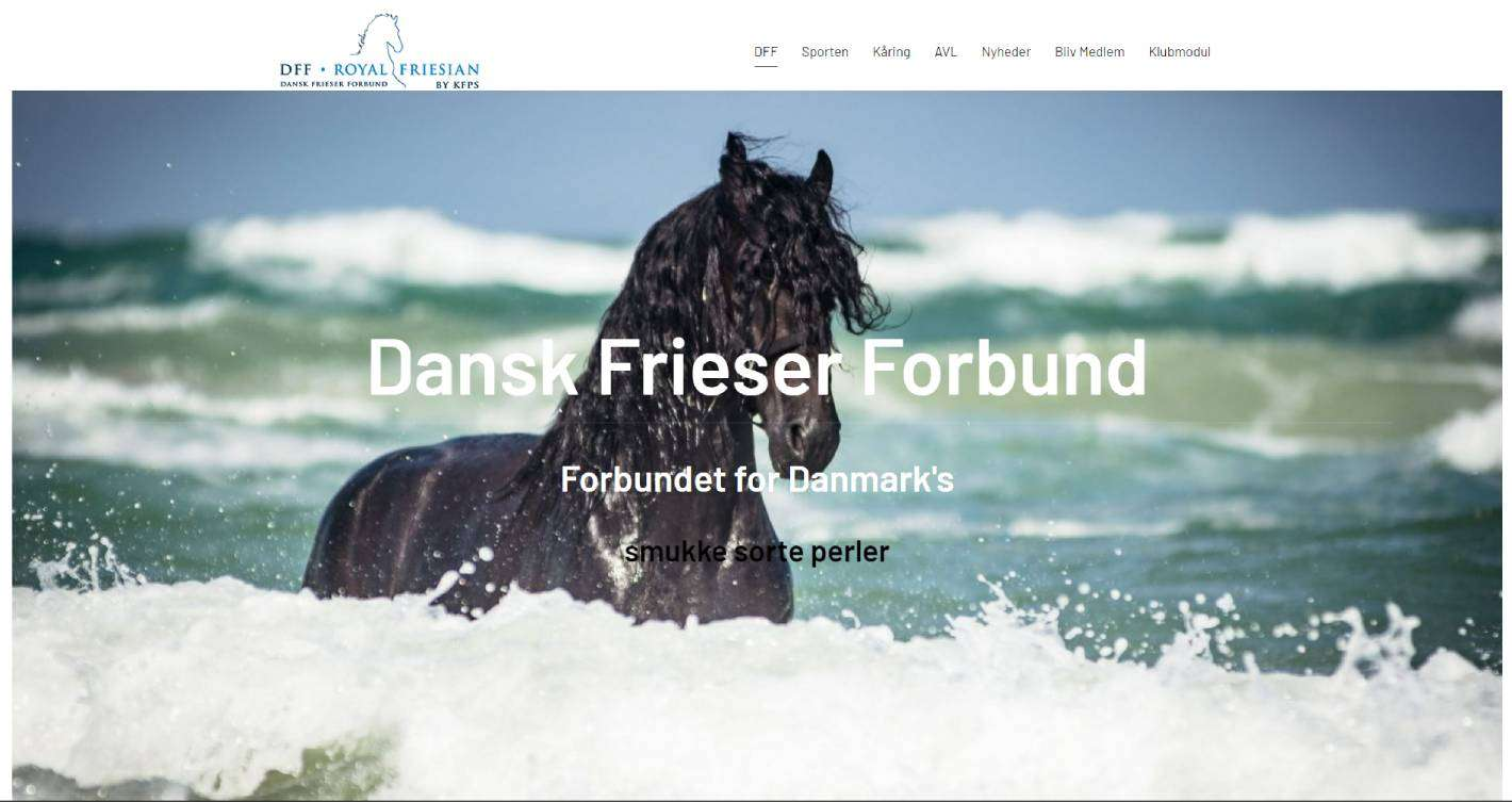 dansk-frieser-forbund